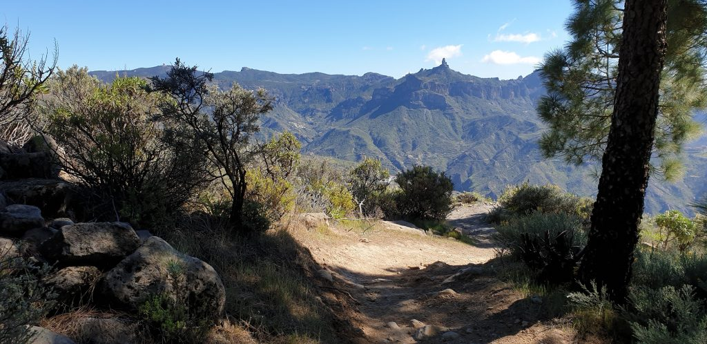 Hiking Highlights of Gran Canaria - Day 3